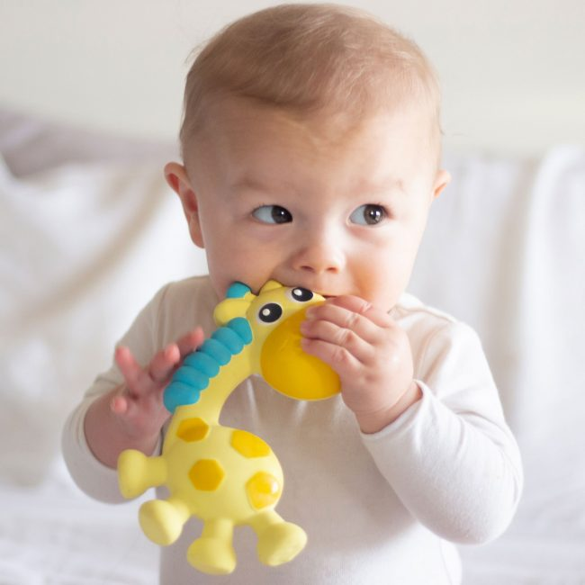 0186970-Squeak-and-Soothe-Natural-Teether-T4